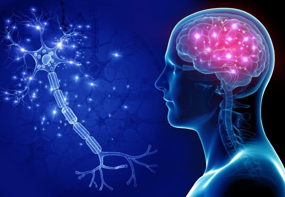Neuro PCD Pharma Companies in India