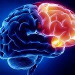 Neuropsychiatric Companies in India